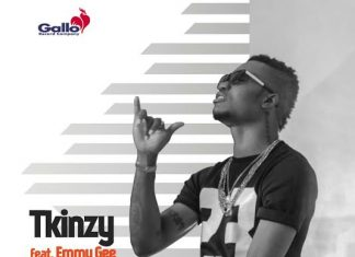 Tkinzy - Shake Ikebe Ft. Emmy Gee