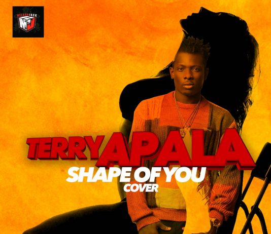 Terry Apala – Shape of You (Ed Sheeran