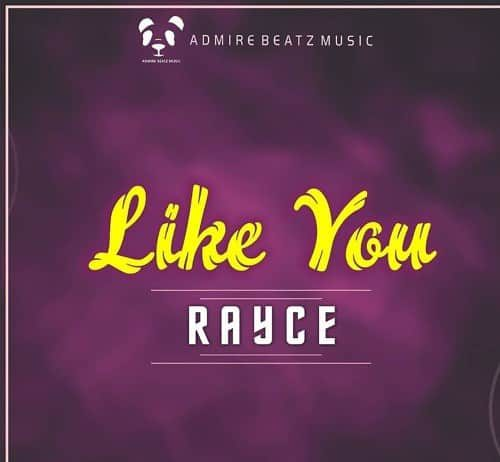 Rayce – Like You (Prod. By Avik)