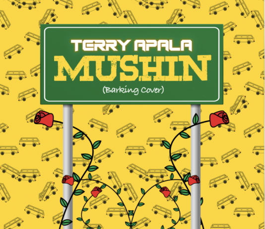 Terry Apala - Mushin