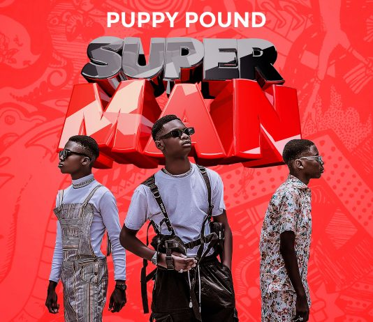 Puppy Pound - Superman